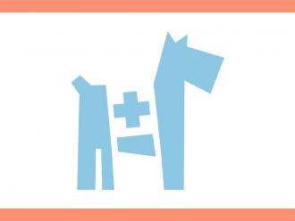Prvá pomoc pre psa - návody