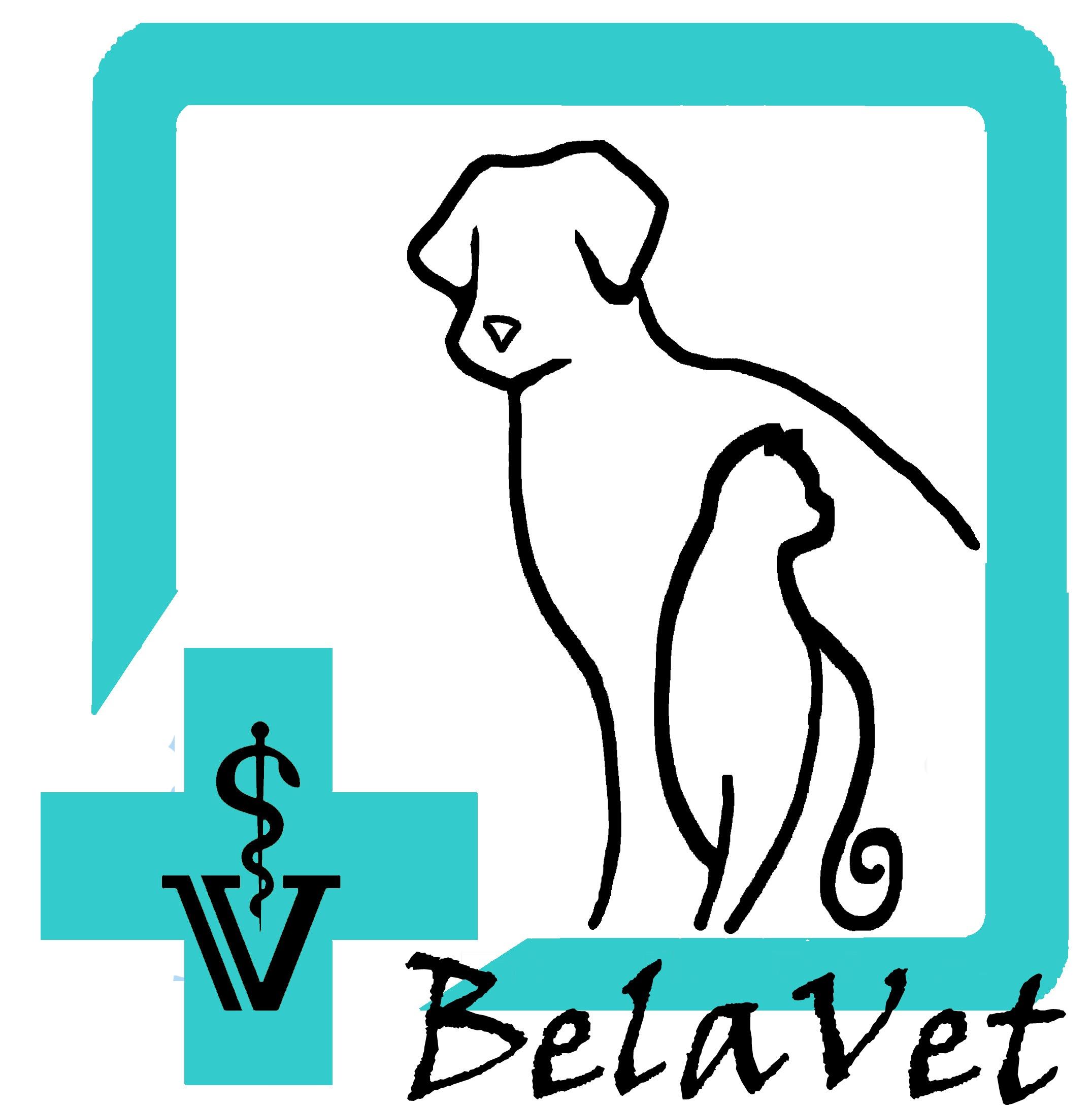 Belavet - veterinárna ambulancia v Košiciach