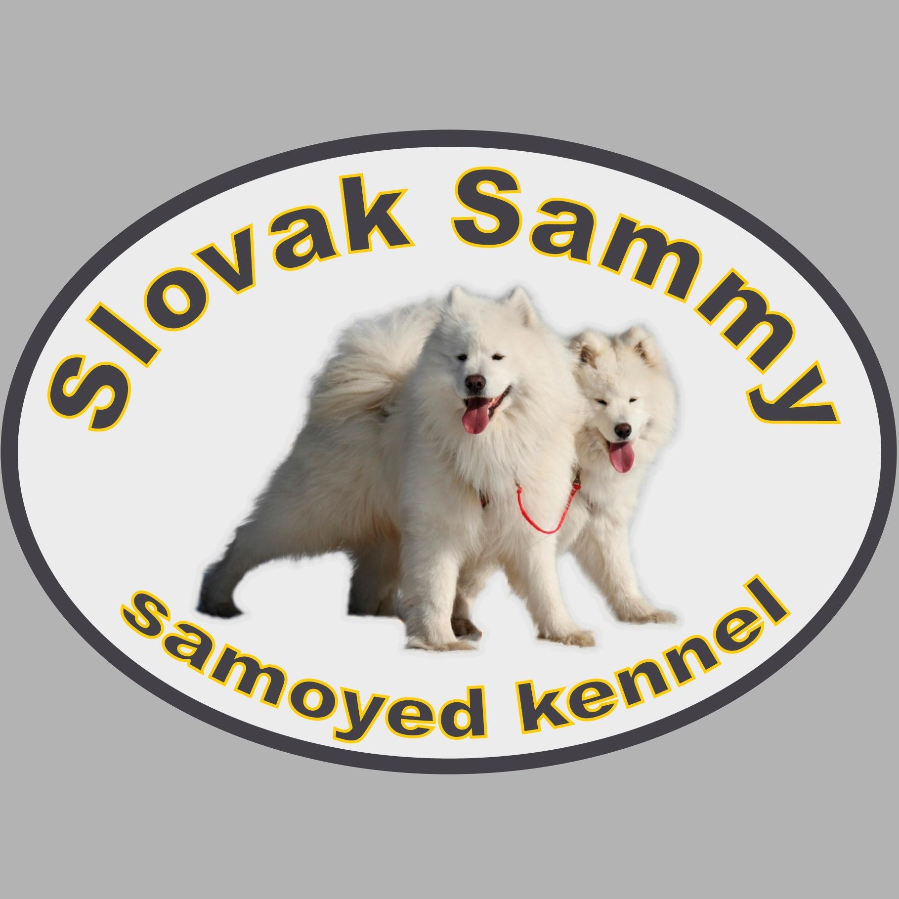 Slovak Sammy