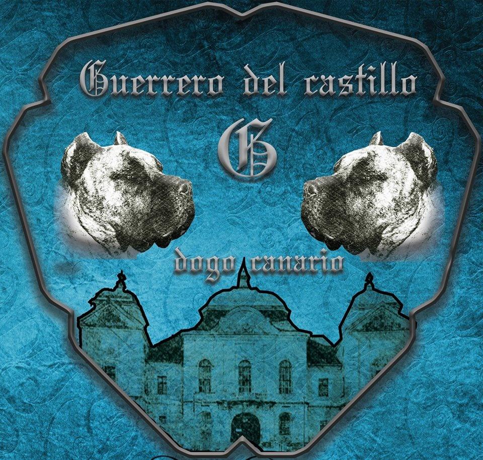Guerrero del castillo