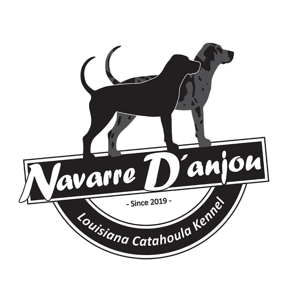 Navarre D'anjou