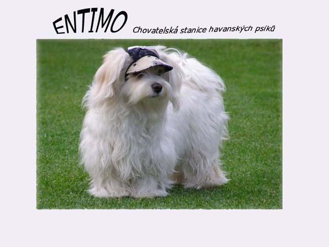 Chovateľská stanica používateľa entimo