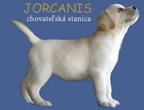 jorcanis