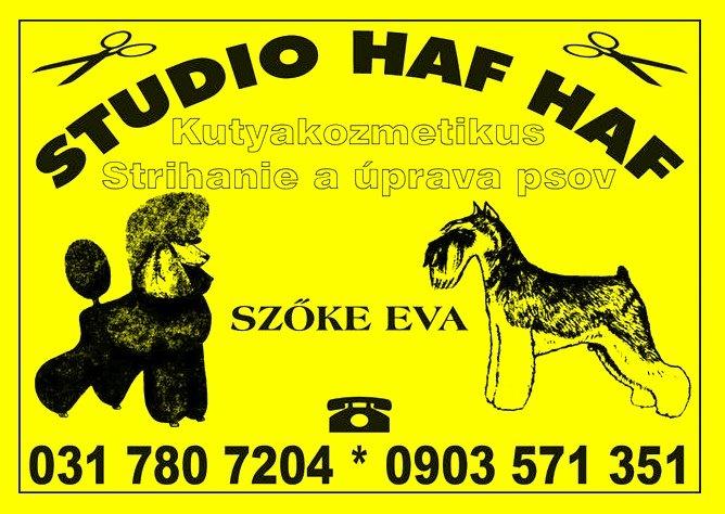Studio HAFHAF