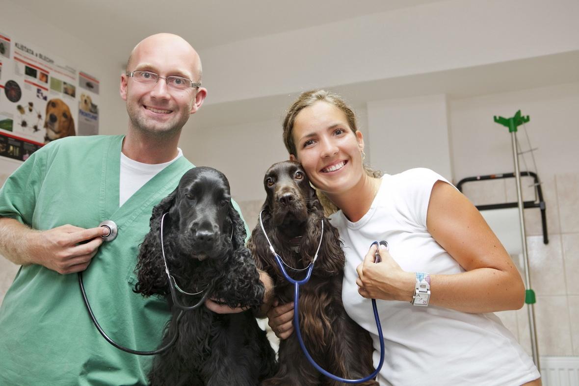 Prevencia ochorení u psov