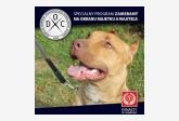 DYNASTY OF CHAMPIONS / profesionalne cvičisko pre psov Senec