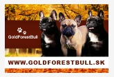 GoldForestBull