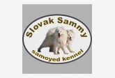 Slovak Sammy