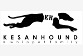 Kesan Hound