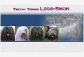 legs-smon
