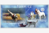 Chovateľská stanica používateľa taien