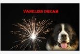Obrázok používateľa Vaneliss dream