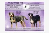 Vrh E - Turovští psi