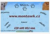 Webshop pridal používateľ Monťásek