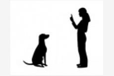 Výcviková škola psov Turany