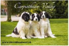 Carpathian valley