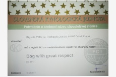 Dog with great respect