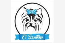 CHS EL SZANTORO