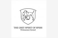 The Grey Spirit of Spish