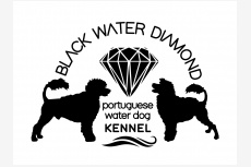 Black Water Diamond