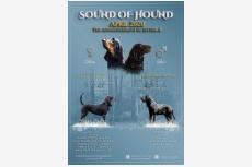Sound Of Hound