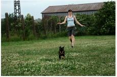 Pes uteká