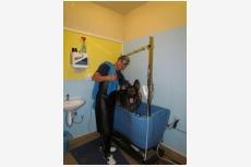 Samoobslužná kúpeľňa pre psov