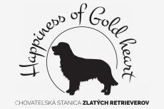 Obrázok používateľa Happiness of Gold heart