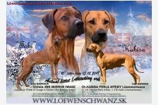 Vrh R - Löwenschwanz
