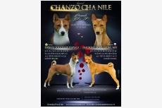 Vrh F - Chanzo Cha Nile