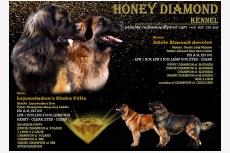 Vrh A - Honey diamond