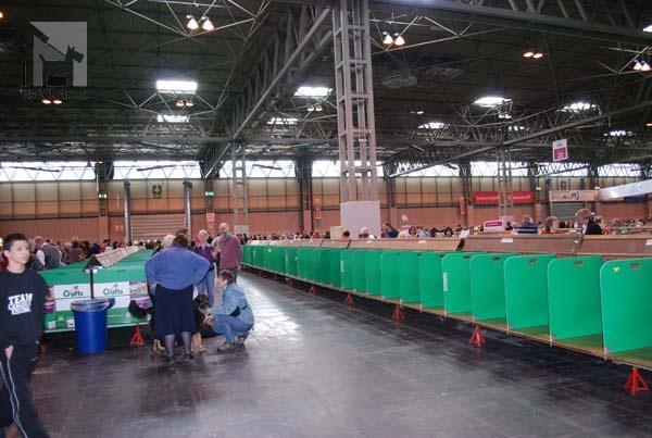 CRUFTS 2011 rad boxov na odloženie psov